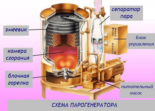 chelninskih-telok-trahnuli